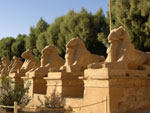 Egypt Christianity Tour- Egypt Travel Packages